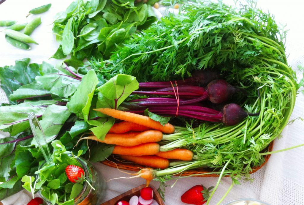 radionica-salate za veliki odmor